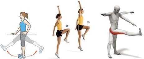 Dynamic Stretches